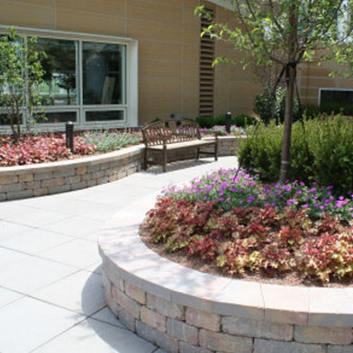 landscaping contractor in Dallas Tx