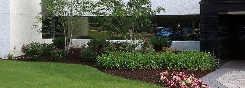 Commercial landscaping contractor dallas ft worth for Garden design landscaping dallas tx